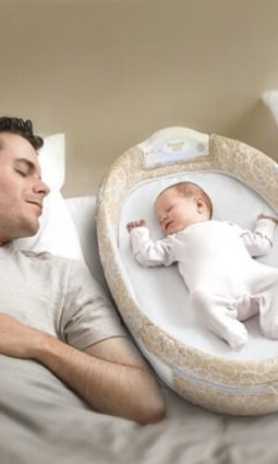 Baby Delight Snuggle Nest Surround